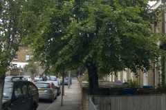 2-x-Limes-100-Denmark-Road-SE5-261114-before-side-view
