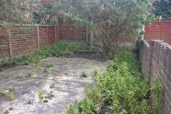 Garden-Tidy-up-Stoke-Newington-April-2016-before