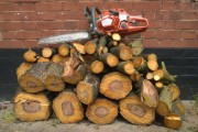 Logs Cut and left or removed